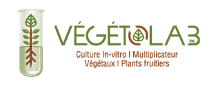 Végétolab - Culture In-vitro de végétaux multiplicateur de plants fruitiers